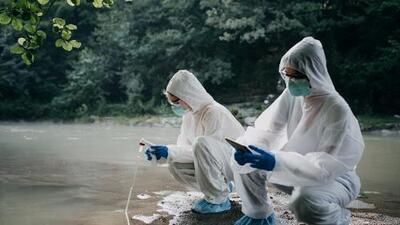 ¿Puede una megatormenta 'ARk' causar epidemias y la extinción de especies? Los científicos creen que es posible