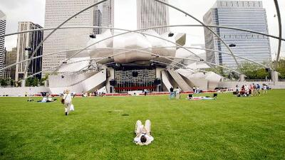Estos son los eventos de verano gratuitos en Chicago que promueven la identidad y cultura latina
