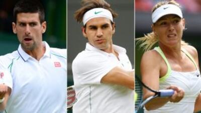 Djokovic, Federer y Sharapova cumplen, Nalbandian eliminado en Wimbledon