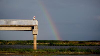 Bajo sequía extrema Miami Dade y Broward