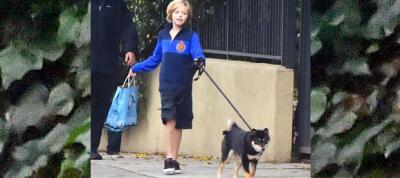 Shiloh y Knox Jolie-Pitt cuidan a su perro