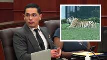 Se presenta en corte Víctor Cuevas involucrado en la desaparición de un tigre en Houston