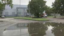 Preocupación porque inundaciones en el sur de Florida pueden convertirse en criaderos de mosquitos
