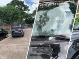 Autoridades: Sospechoso mata a su novia y a su suegra; luego se enfrenta a tiros con oficiales