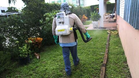 Expertos advierten sobre el peligro de los pesticidas para la salud de las personas