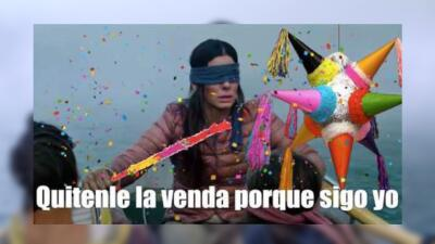 Los que todos ven, aunque no quieran: memes de la película Bird Box con Sandra Bullock 🦅🗃
