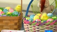 Cicero celebra su tradicional evento de Pascua en el Parque