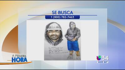Buscan a presunto depredador en San Bernardino