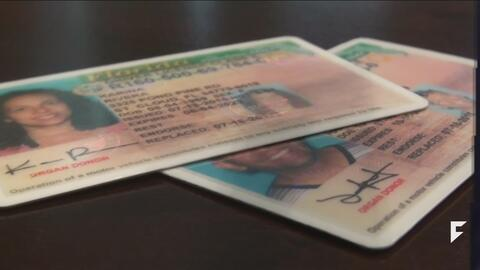 Florida could allow undocumented immigrants to obtain driver licenses