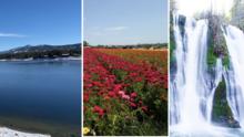 Flores, montañas, lagos y cataratas: los destinos que tienes que visitar en California esta primavera