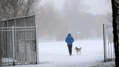 """""""No esperábamos esto en noviembre"""": La nieve, el viento y el frío intenso tienen en vilo a millones de personas en EEUU"""