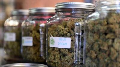 California votará 'sí' a la legalización de la marihuana, según una nueva encuesta