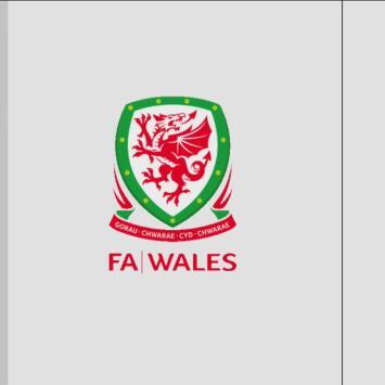 Gales 2-0 Hungría - Goles y Resumen - Grupo E - Clasificatorio Eurocopa 2020