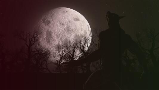 ¿Existen en realidad los vampiros y hombres lobo? Autor de ficción expone su punto de vista