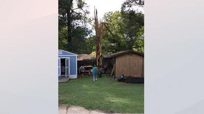 Un rayo parte literalmente un árbol en una casa en Raleigh