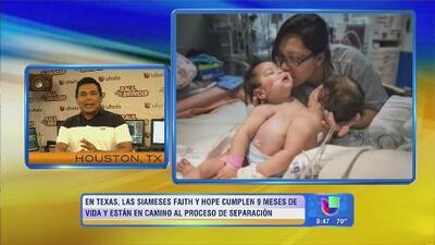 Raul Brindis con noticias de impacto en Despierta América