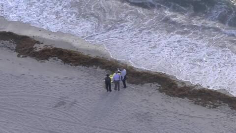 Encuentran el cuerpo de un hombre sin vida flotando en Miami Beach