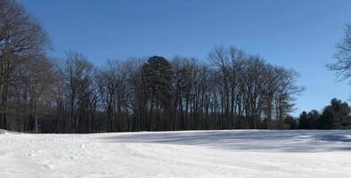 Así se ve el paisaje invernal en las montañas Pocono en Pensilvania