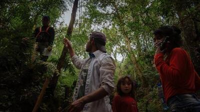 ¿Por qué los ambientalistas se oponen al nuevo plan paraguayo contra el cambio climático?