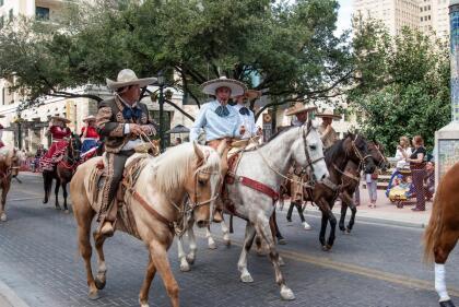 SAN ANTONIO, UNITED STATES- JANUARY 29, 2011: Latino cowboys herd cows before the San Antonio rodeo