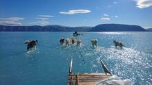 La foto viral que muestra un deshielo en Groenlandia y desata preocupación por el cambio climático