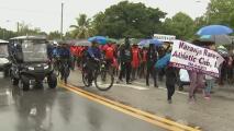 """""""Debemos estar unidos"""": decenas de personas protestan en Miami para rechazar la violencia armada"""