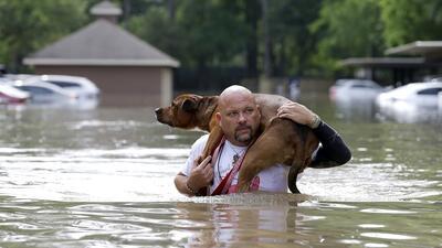 Así está Houston un día después de las mortales inundaciones