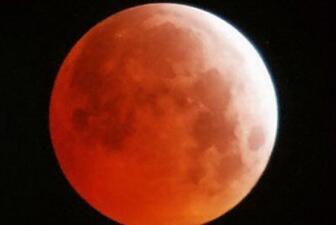 'Eclipse de sangre', recibe su impacto