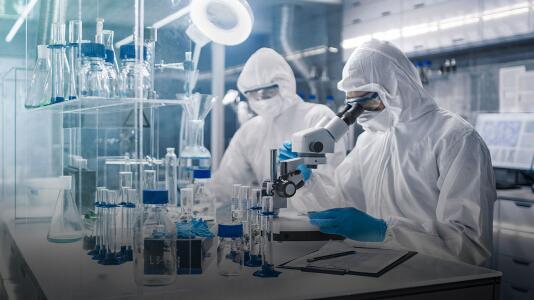 Palco: Pfizer apura autorización para vacuna Covid en noviembre