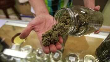 ¿Cómo está aportando en la generación de nuevos empleos la industria de la marihuana recreativa en Illinois?