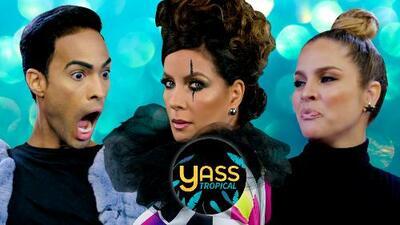 Yass Tropical: salió quien defienda a Carmen Batiz y este personaje tiene la lengua bien afilada