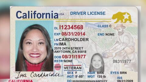 Aclaran confusiones sobre la licencia 'Real ID'