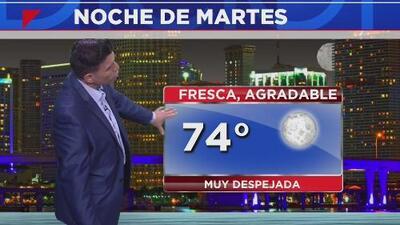 Cielos despejados y un clima fresco le espera a Miami en la noche de este martes