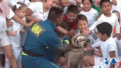 La perra rescatista Frida se retira luego de 10 años de servicio