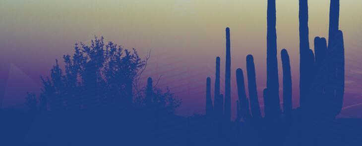 Somos Univision Arizona