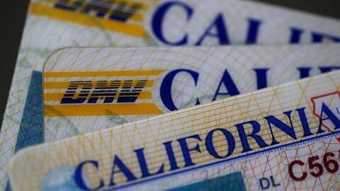 ¿Están protegidos los datos personales que entrega un indocumentado cuando obtiene una licencia de conducir?