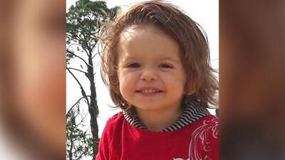 Muere un niño de 6 años que contrajo rabia luego de ser mordido por un murciélago