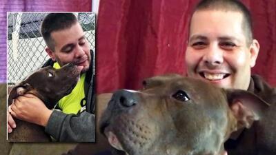 Cruzó todo el país para salvar a un perro pitbull de la muerte: Mario Rodríguez relata qué pasó tras el rescate