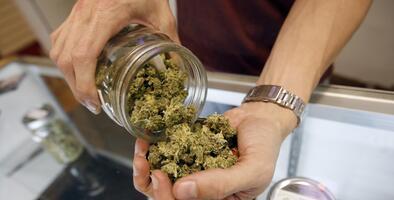 Oakland dará preferencia a las minorías en el negocio de la marihuana