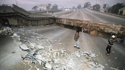 """No existe un """"clima de terremoto"""" y los animales no los predicen: desmontando estos y otros mitos que siempre creíste"""