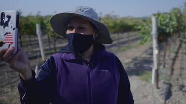 """""""Tenemos seguidores de todo el mundo"""": campesina se convierte en influencer y ayuda a buscar empleo para trabajadores"""