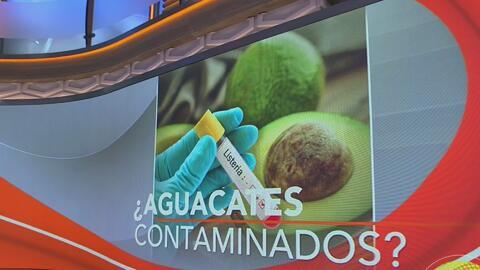 Retiran aguacates del mercado por posible contaminación con listeria