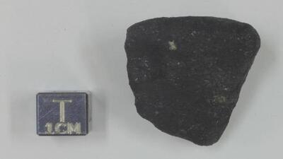 Field Museum, en Chicago, estudiará una muestra del meteorito que cayó en el norte de Michigan
