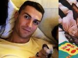 Atropellan al gato de Cristiano Ronaldo y él lo envía al veterinario en España en jet privado