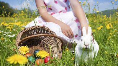 Organiza una 'egg hunt' con toda tu familia
