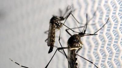 U.S. declares health emergency in Puerto Rico due to Zika