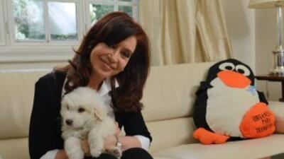 Simón, el nuevo perro de la presidenta argentina, estrella en redes sociales