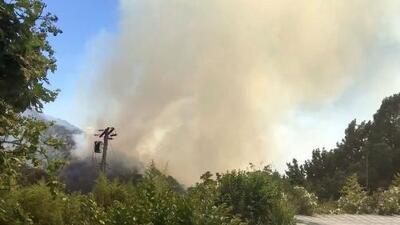Bomberos han contenido en un 60% el incendio en las colinas de Beverly Hills