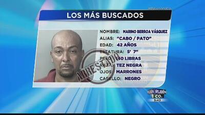 Arrestan uno de los más buscados en Puerto Rico