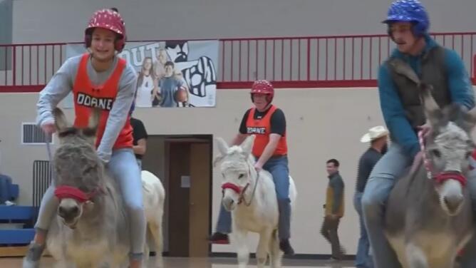 Por una buena causa: jinetes tratan de encestar montados en burros en un popular juego en Nebraska